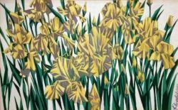 Желтый ирис